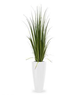 Maxifleur kunstplanten ook op moeilijke plekken in huis